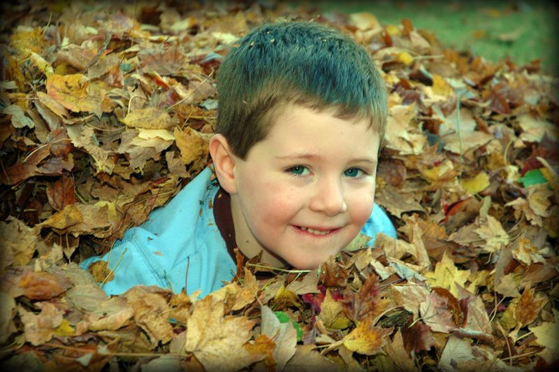 Josh in the leaves
