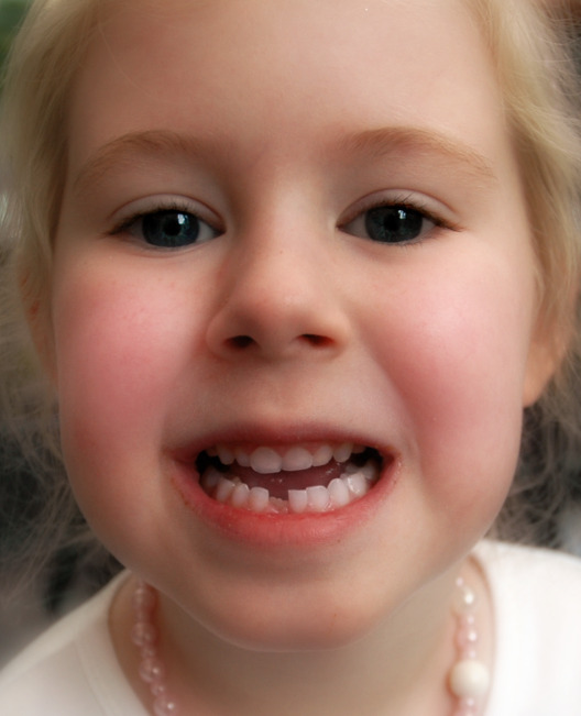 Maddy Tooth