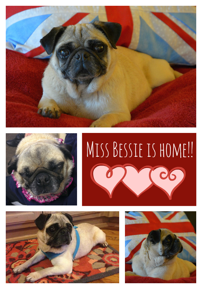 Bessie collage w writing